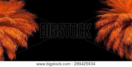Vaporwave Images, Illustrations & Vectors (Free) - Bigstock
