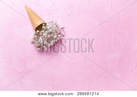 Fresh White Gypsofila  Flowers In Waffle Cone On  Pink Textured Background. Top View. Place For Text