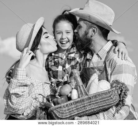 Family Farmers Hug Kiss Kid Hold Basket Fall Harvest. Family Gardener Basket Harvest Blue Sky Backgr