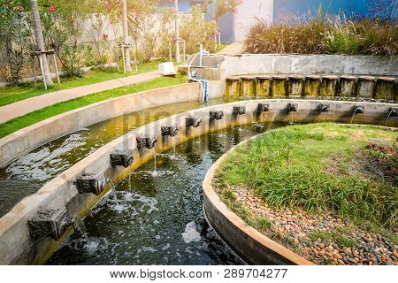Beautiful Water Pond In The Garden Classic Round Design For Fish Pond With Fountain Flow For Oxygen