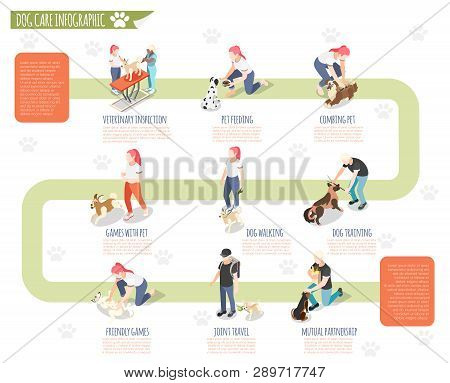 Ordinary Life Of Man And His Dog Isometric Infographic With Veterinary Inspection Pet Feeding Combin
