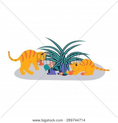 Cute And Playful Kittens Damage Houseplant. Guilty Cats Colorful Concept Isolated On White Backgroun