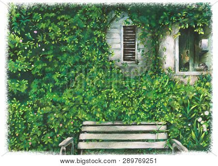Green Garden With Bench , Flowers , Window Art Illustration.beautiful Nature Outdoor.nature Landscap