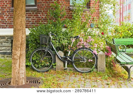 Scandinavian Biking Lifestyle With Black Bike, Pink Roses And Red Brick Wall Of House