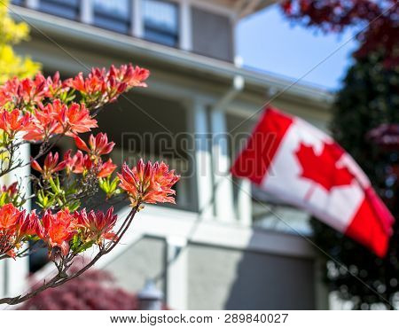 A Middle Class Home With Flowers In The Foreground And A Canadian Flag Waving In The Background.