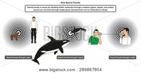 How Sound Travels infographic diagram showing the mechanical waves travel in different mediums including gas liquid and solid for physics science education