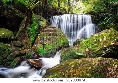 Tranquil Waterfall Cascades Over A Rock Ledge And Past  Lush Ferns And Moss Covered Rocks