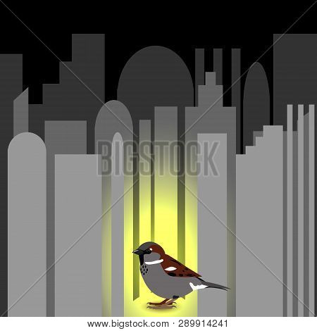 World Sparrow Day. Sparrow On The Cityscape. Concept Of Ecological Events. Protection Of Birds.