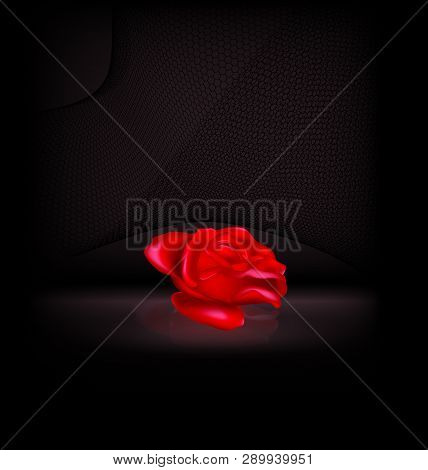 Darkness And The Abstract Red Rose With Black Veil