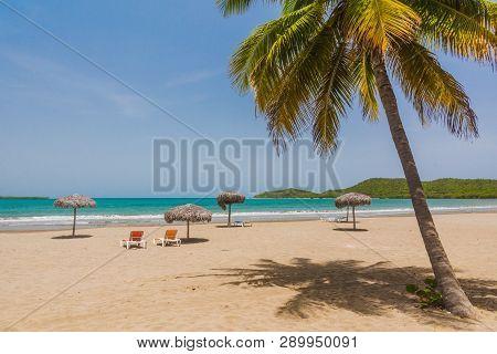 Idyllic Sand Beach With Palm Tree  On Caribbean Sea. Resort In Cuba