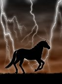 Black horse silhouette running in the storm poster
