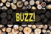 Word writing text Buzz. Business concept for Hum Murmur Drone Fizz Ring Sibilation Whir Alarm Beep Chime Wooden background vintage wood wild message ideas intentions thoughts. poster