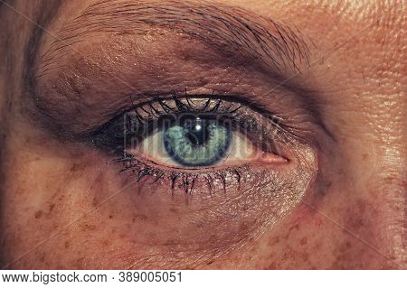 Female Eye. Freckles Skin. Mascara On The Eyelashes. Iris Close Up
