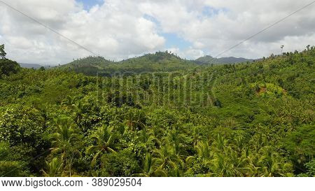 Aerial View Of Rainforest In Mindanao Island, Philippines. Jungle In Asia.