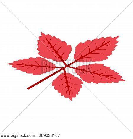 Season Autumn Leaf Icon. Isometric Of Season Autumn Leaf Vector Icon For Web Design Isolated On Whit
