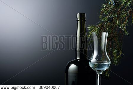 Juniper Tincture Or Gin On A Black Background. In The Background Branches Of Juniper And Dark Glass
