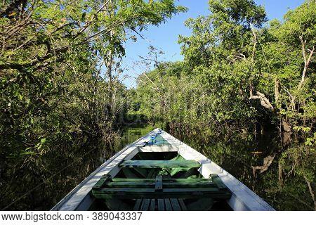 Exploring The Amazon By Boat. Amazon Rainforest, Brazil