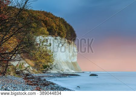 Chalk Cliffs On The Island Of Ruegen. Coastline In Autumn In The Morning. Trees And Stony Coastline