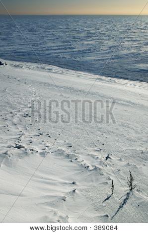 Ice Sea And Snow Beach.