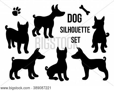 Set Dog Silhouette In Different Poses. Vector Illustration Isolated On White Background. Dog Breed B