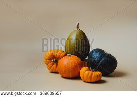 Orange And Green Decorative Pumpkins. Autumn Composition On Trendy Earth Tones Color Background. Aut