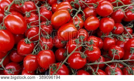 Cherry Tomatoes On A Branch. Tomato Background. Ripe Juicy Tomatoes For Salads And Restaurants On Th