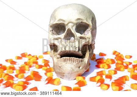 Human Skull. Halloween Human Skull with Candy. Isolated on white. Room for text.