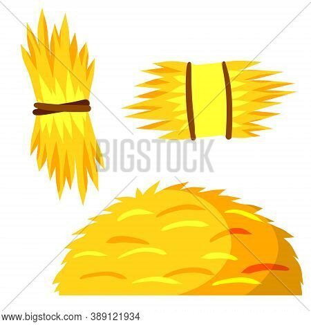 Sheaf Of Hay. Village Harvest. Set Of Stack Of Wheat Ears. Yellow Dried Plants. Production Of Natura