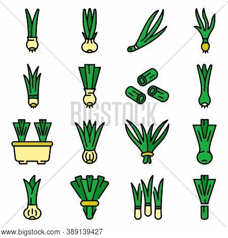 Chives Icons Set. Outline Set Of Chives Vector Icons Thin Line Color Flat On White