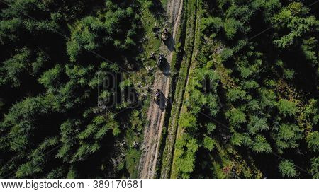 Topview Of Quad Bikes On The Sandy Road. Thick Forest On Both Sides Of The Road.