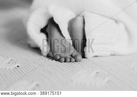 Detail Of Newborn\'s Feet In Mother\'s Hands - Shallow Dof\nclose-up Feet Of A Newborn Baby. Young M