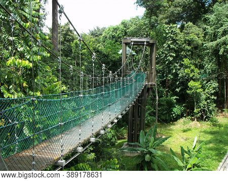 Kuala Lumpur, Malaysia, February 1, 2016: Side View Of One Of The Elevated Walkways Of The Kl Forest