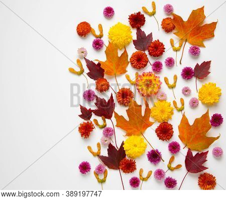 Autumn Natural Background From Leaves, Flowers And Seeds With Copy Space.