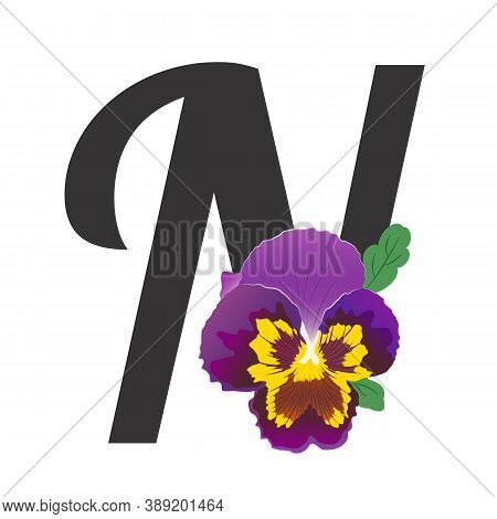 Black Letter N Is Decorated With A Single Pansy Bud. Hand-drawn Purple-yellow Garden Violet With Gre