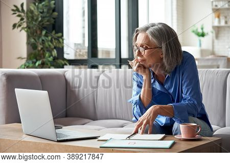 Senior Mature Older Woman Watching Business Training, Online Webinar On Laptop Computer Remote Worki