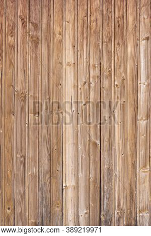 Light Wood Wall. Natural Wood Structure. Eco Background. Vertical Frame.