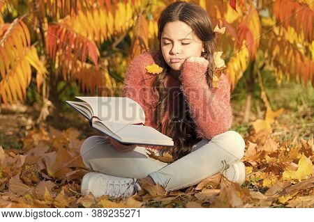 Bored And Tired. Little Child Enjoy Learning At Backyard Or Park. Kid Study With Book. Self Educatio