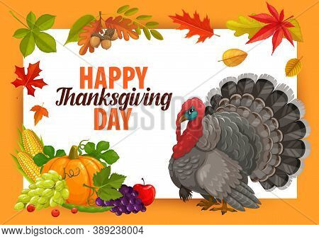 Happy Thanks Giving Day Vector Frame With Turkey, Pumpkin And Autumn Crop With Fallen Leaves. Thanks