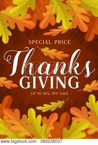 Thanks Giving Day Vector Promo Poster, Autumn Sale Cartoon Coupon With Oak Leaves And Rowan Berries.