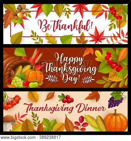 Happy Thanksgiving Day Vector Banners, Cornucopia With Autumn Harvest Pumpkin, Corn And Grapes With