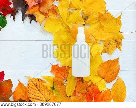 Mockup Of White Plastic Bottle And Bright Autumn / Fall Leaves Frame. Natural Organic Spa Cosmetics