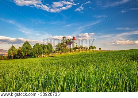 Field With Tall Green Grass In Rural Landscape. Church In Abramova Village In The Background, Turiec