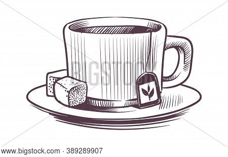 Sketch Tea Cup. Hand Drawn Mug On Plate With Two Sugar Cubes And Hot Herbal Drink In Engraving Style