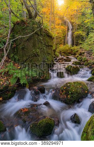Oirase Autumn Fall Landscape of Forest woodland and waterfall in Aomori Tohoku Japan