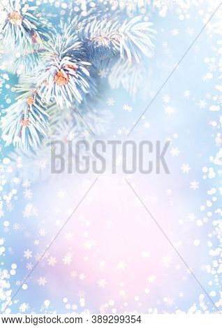 Horizontal Christmas background with branch of blue spruce. Holiday xmas banner with fir tree on abstract backdrop. Greeting Christmas card with sparks, snowflakes and fur tree. Copy space for text