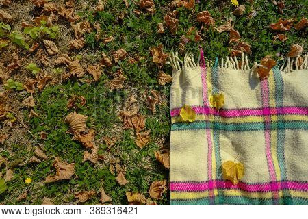 The Angle Of Checkered Blanket With Fringes On Green Grass With Yellow Fallen Leaves. Fall/autumn Pi