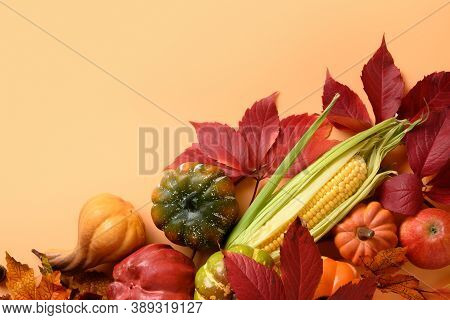 Fall Harvest, Pumpkins, Apple, Corncob, Colorful Grape Leaves On Orange Background With Space For Te