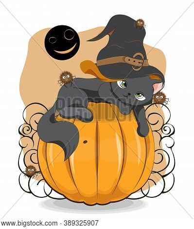 Halloween Wink Black Cat In Witch Hat And Spider On Pumpkin, Picture In Hand Drawing Cartoon Style,