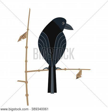 Black Crow Flat Color Vector Icon. Minimalist Hand Drawn Bird Cartoon Sign On White Birdwatching Bac