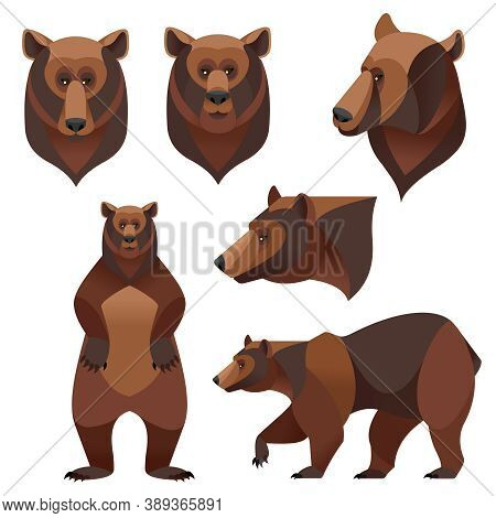 Cartoon Color Different Grizzly Bears Icons Set Flat Design Style Wild Animal. Vector Illustration O